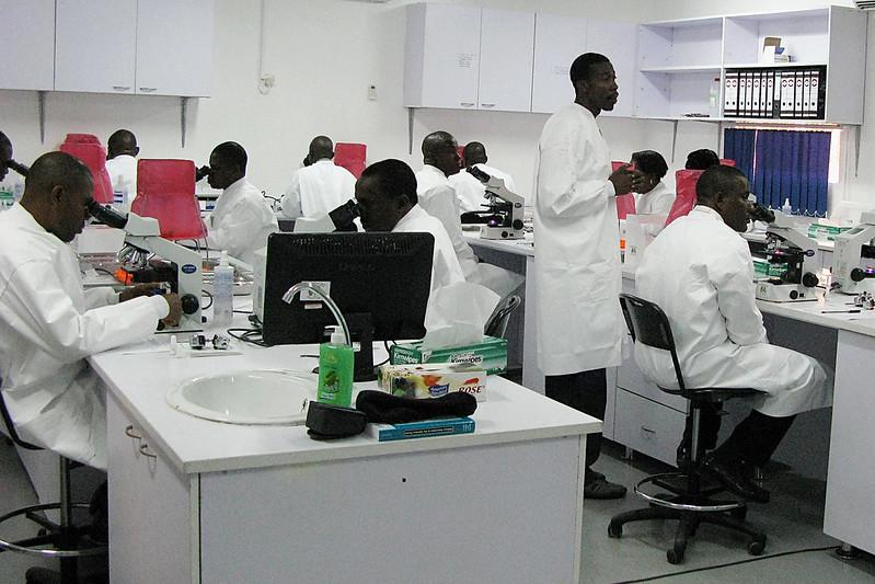 Malaria in Nigeria