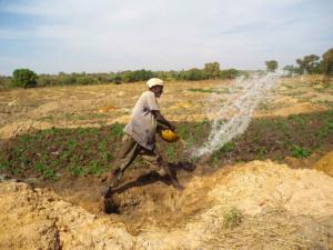 Malnutrition in Mali