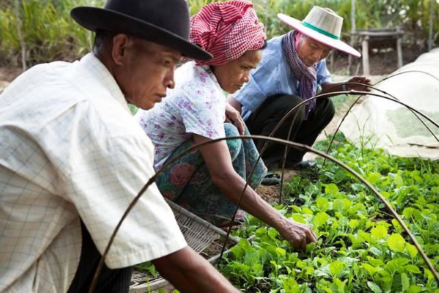 Microfinance in Cambodia