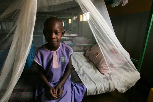 Mosquito_net_in_Subsaharan_Africa