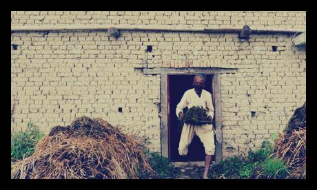 Nepal_Urine_Fertilizer