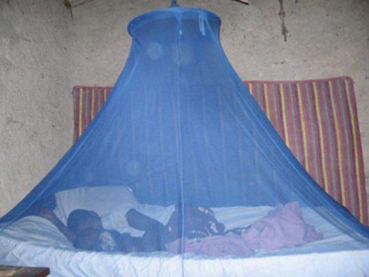 New Mosquito Nets