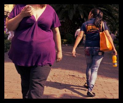 Obesity Spreading Quickly