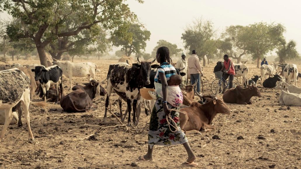 Poverty Eradication in Burkina Faso