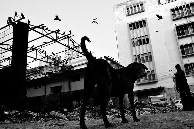 Poverty in Kolkata