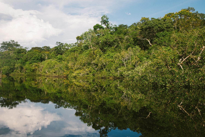 Poverty in the Amazon Rainforest