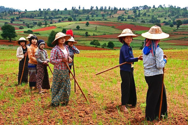 Proximity Designs in Myanmar