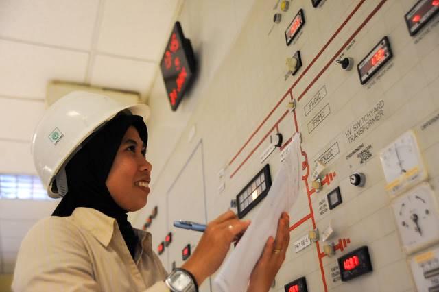 Renewable Energy in Indonesia