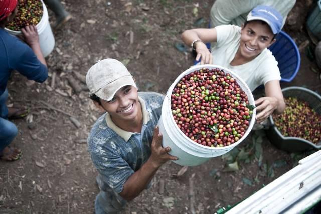 SOPPEXCCA coffee cooperative