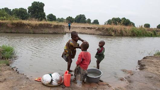 schistosomiasis effects)