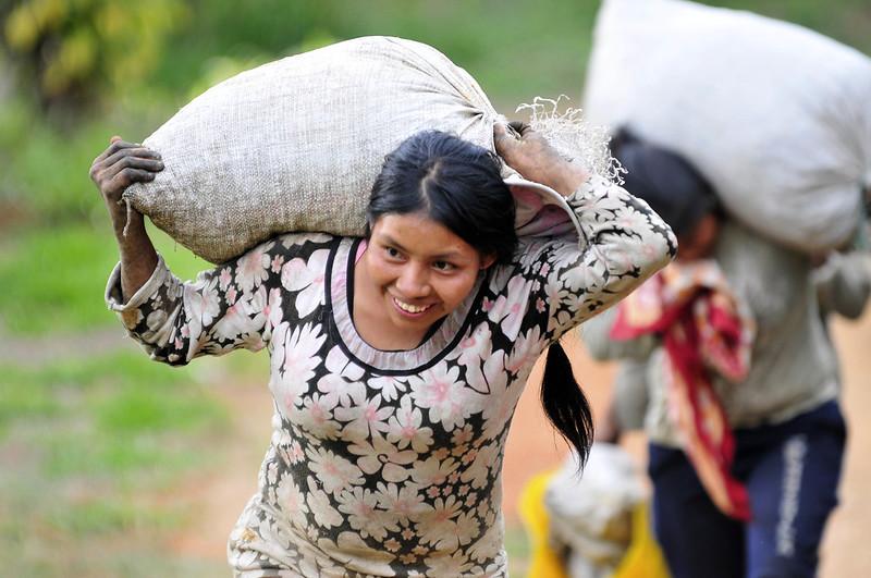 Supporting Smallholder Coffee Farmers Worldwide