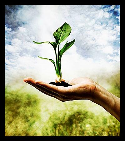 Sustainability-Classes