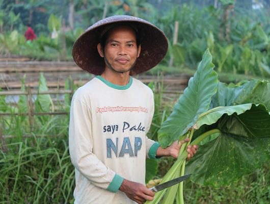 Farmers_Following_the_SDGs