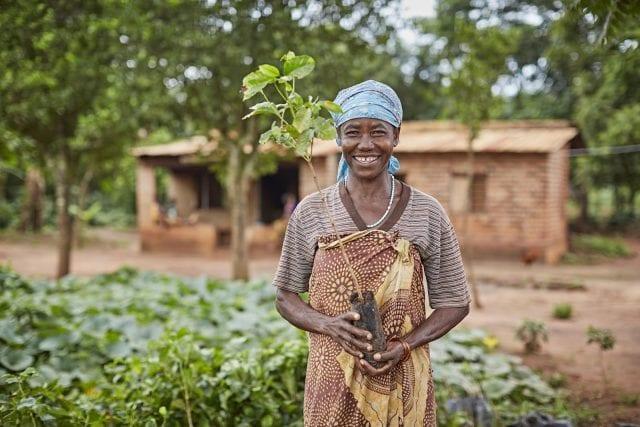 The International Women's Coffee Alliance