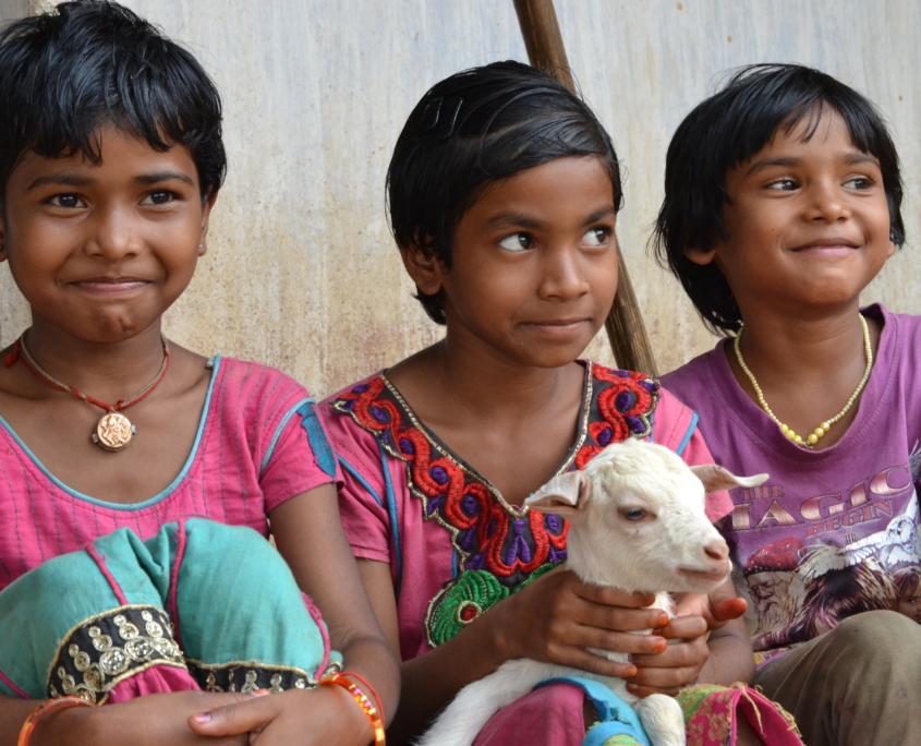 Food Security in Odisha