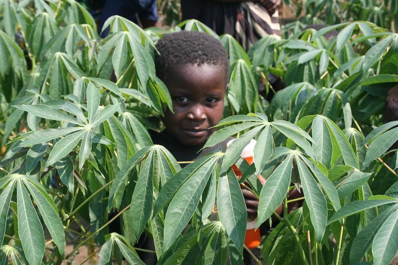 USAID programs in Kenya