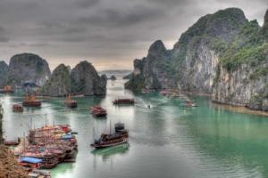 Vietnam's COVID-19 response