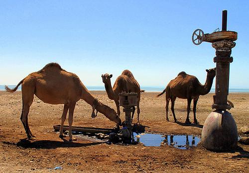 Water Quality in Turkmenistan
