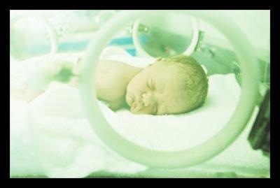 Zeal_Medical_Infant_Incubator