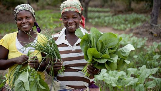 africas_food_crisis