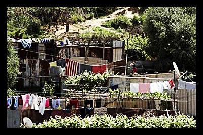 algeria_poverty