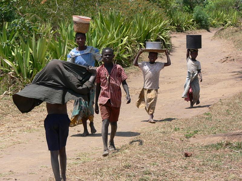 Covid -19 in Malawi