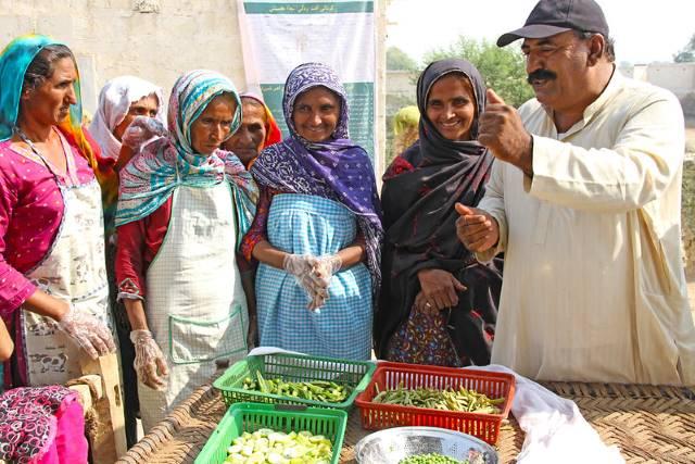 female labor in Pakistan