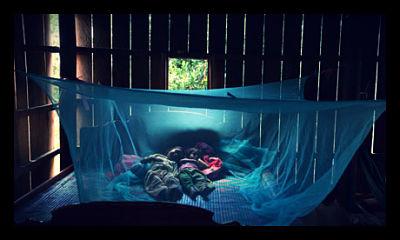 malaria_bed_nets
