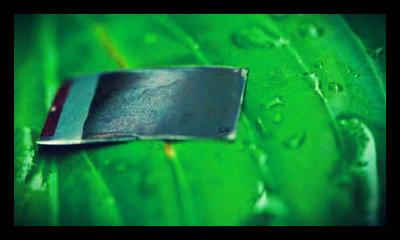 rsz_1artificial_leaf
