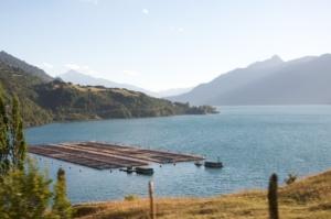 Salmon Farming in Chile