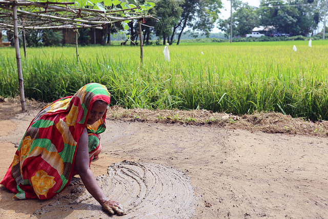 sustainable agriculture in bangladesh