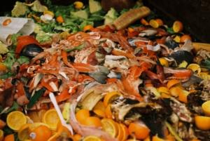 usa food waste