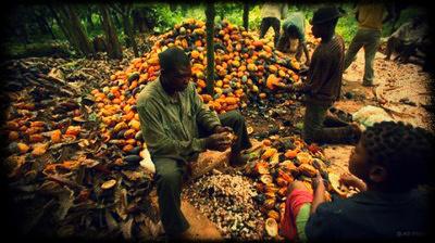usaid-nigeria-agriculture