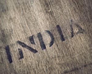 z1 India