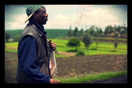 zambian_farmers_loans